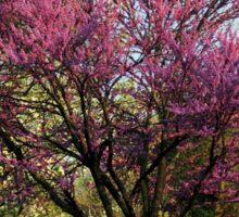 Springtime In The Park (read poem) Sticker