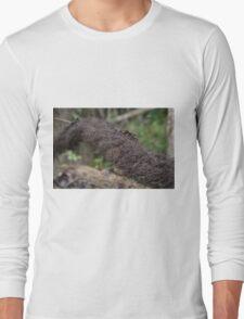 Mossy Log Long Sleeve T-Shirt
