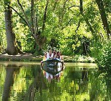 Green Venice France by graceloves