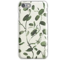 Hoya Carnosa / Porcelainflower iPhone Case/Skin