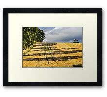 The Green Lines Framed Print