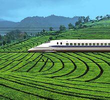 Shinkansen line in Green Tea Meadows, near Kyoto, Japan by Atanas Bozhikov NASKO