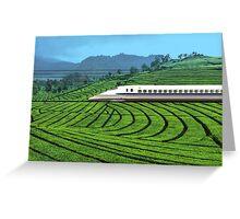 Shinkansen line in Green Tea Meadows, near Kyoto, Japan Greeting Card