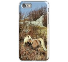 Hillside Shelter iPhone Case/Skin