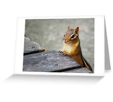 Good Morning, Chippie! Greeting Card