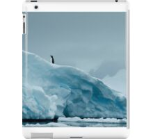 Lone Penguin on Ice iPad Case/Skin