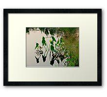 Irrigation Reflections Framed Print
