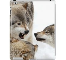Opinionated  iPad Case/Skin
