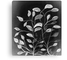Red and Green Leaves! Monochrome Black and White and Grey Canvas Print