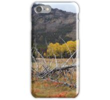 Autumnal Banff iPhone Case/Skin
