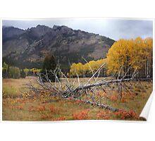Autumnal Banff Poster