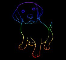 Cosmically Groovy Rainbow Puppy by FeamiHuX