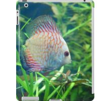 Rainbow Fish iPad Case/Skin