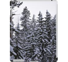 Snow-capped Pines iPad Case/Skin