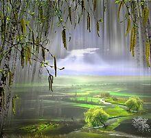 Spring Flow by Igor Zenin
