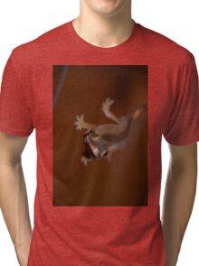 Louis the Lizard - 3 Tri-blend T-Shirt