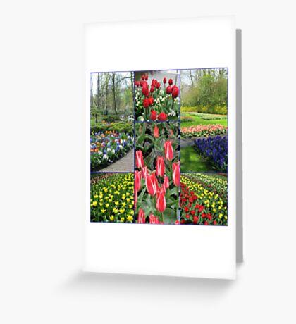 Keukenhof Collage featuring Pinocchio Tulips Greeting Card