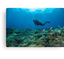 SCUBA diver heaven Canvas Print