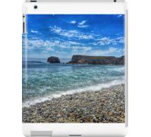 Andrew Molera State Beach iPad Case/Skin
