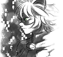 ML- Chat Noir  by kenzichi