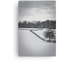 The Color of Winter BW Canvas Print