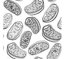 Mitochondria repeating pattern Photographic Print