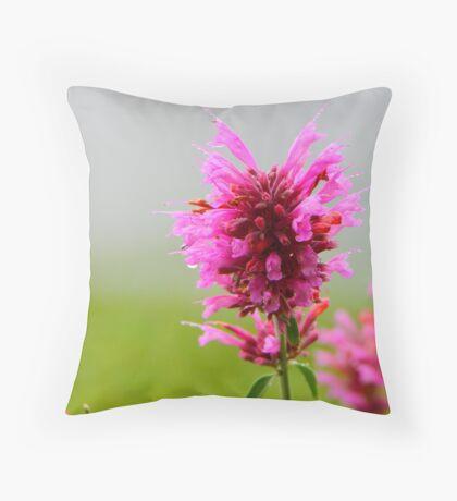 Pink Macro Throw Pillow