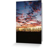 Coonawarra Sunset Greeting Card