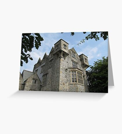 Donegal Castle. Greeting Card