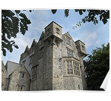 Donegal Castle. Poster
