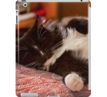 Naptime iPad Case/Skin