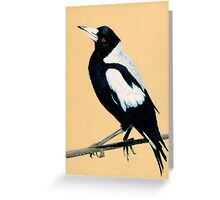 Australian Magpie in Coloured Pencil Greeting Card