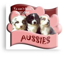Australian Shepherd puppies Metal Print