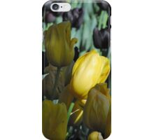 Spring Splashes iPhone Case/Skin
