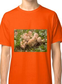 mushrooms in the meadow Classic T-Shirt