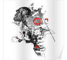 Evolution (white version) Poster