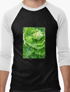 Cabbage Patch Men's Baseball ¾ T-Shirt
