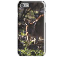 Mt. Lofty Kangaroos Pt.1 iPhone Case/Skin
