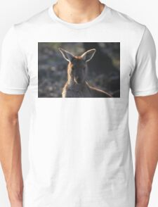 Mt. Lofty Kangaroos Pt.2 Unisex T-Shirt