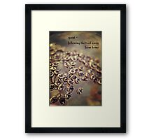 spent blooms Framed Print