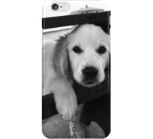 black and white photograph of a cute dog iPhone Case/Skin