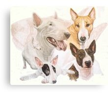 Bull Terrier /Ghost Canvas Print