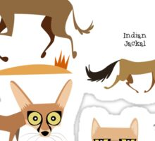 Canids of India Sticker