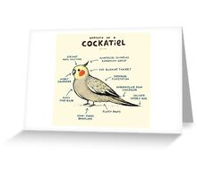Anatomy of a Cockatiel Greeting Card