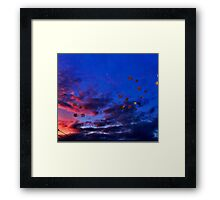 The lonely daffodil Framed Print