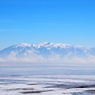 Salt Lake  by Vonnie Murfin
