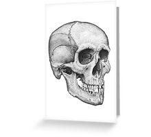 Human Male Skull Greeting Card