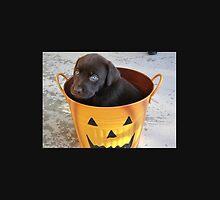 Cutest Chocolate Lab Puppy by KTezzez