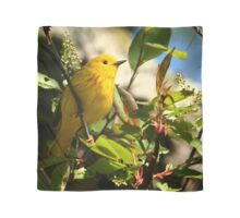 Yellow Warbler Scarf