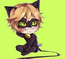 Chat Noir by Dani Howe